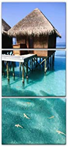 baby black tip sharks with school of fish in pacific ocean in maldives Modern Vertical Canvas Pictures Wall Art Artwork on Wrapped Canvas for Bedroom Living Room Decoration 3 Panels