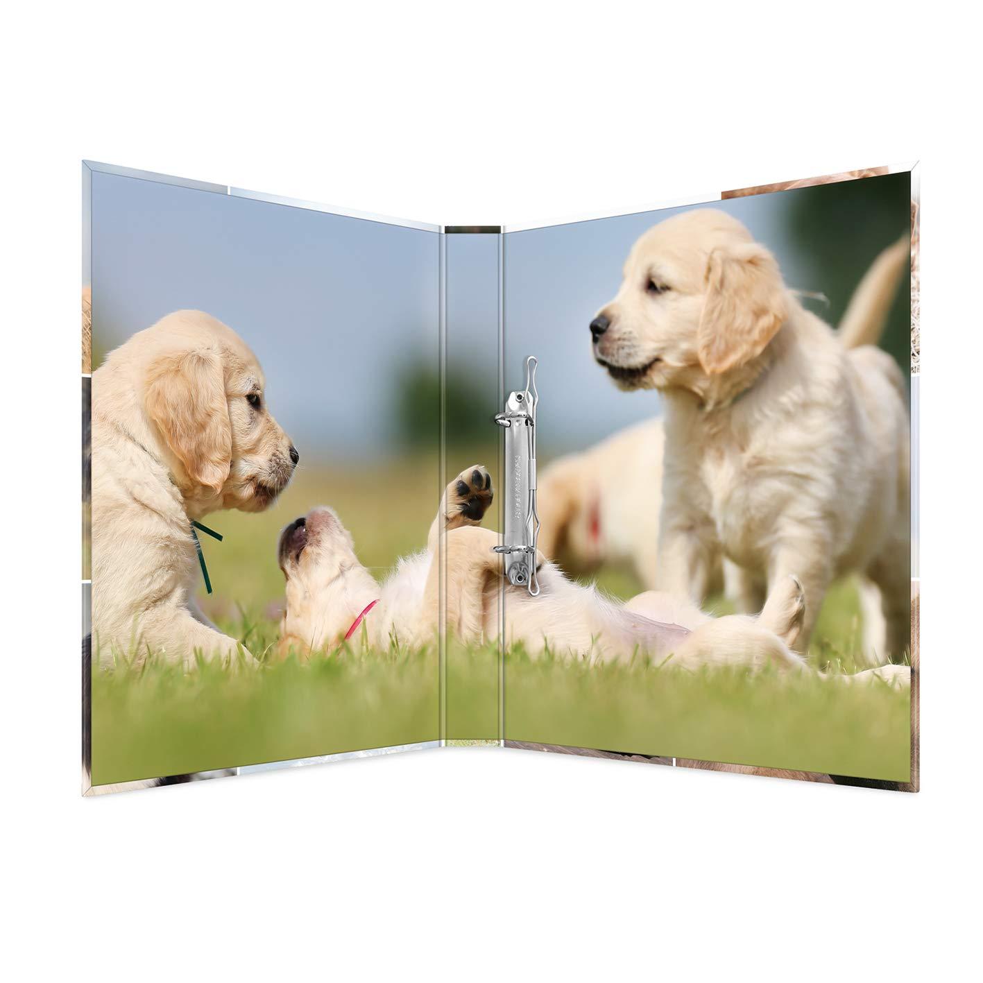 serie Animali motivo: cane HERMA 19427/ad anelli DIN A4/Cartoncino Dorso 35/mm 2/Anelli 1/cartella Stretta 2 anelli cane