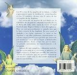 Las Cartas De Los Angeles De La Cabala / The Cards