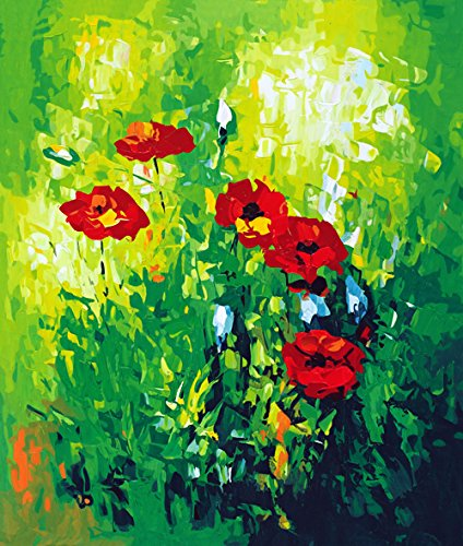 Paint by Number Kits DIY Oil Painting by Arts Language - Freehand Poppies - Painting by Numbers On Canvas for Adults Kids Beginner(16x20 inch, with Wood Frames Installed by Yourself)