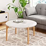 Light Wood Coffee Table with Storage Universal Expert FUTB10013A Abacus Coffee Table, Oak/White