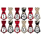 Gift Set of 12 Tie Keepsake Photography Monthly Baby Stickers with North Woods Moose Red Plaid T305