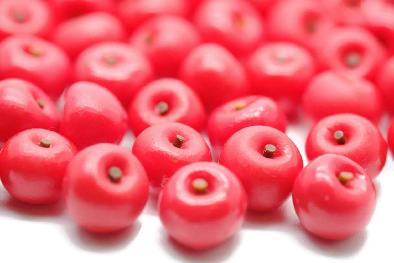 1shopforyou 20 Psc Red Apple Dollhouse Miniatures Toys & Food Kitchen Rec by Handmade