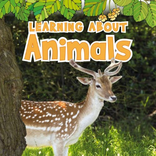 Learning About Animals (The Natural - Learning Animals About