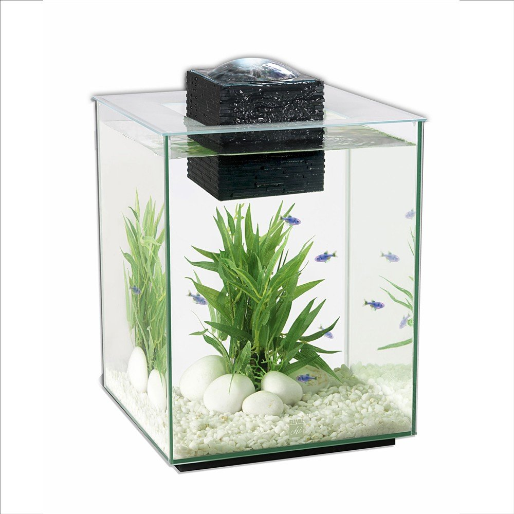 The ultimate guide to modern contemporary fish tanks with for Square fish tank