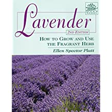 Lavender: How to Grow and Use the Fragrant Herb