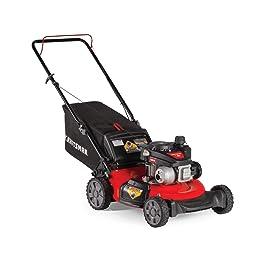 Gas-Powered Push Lawn Mower