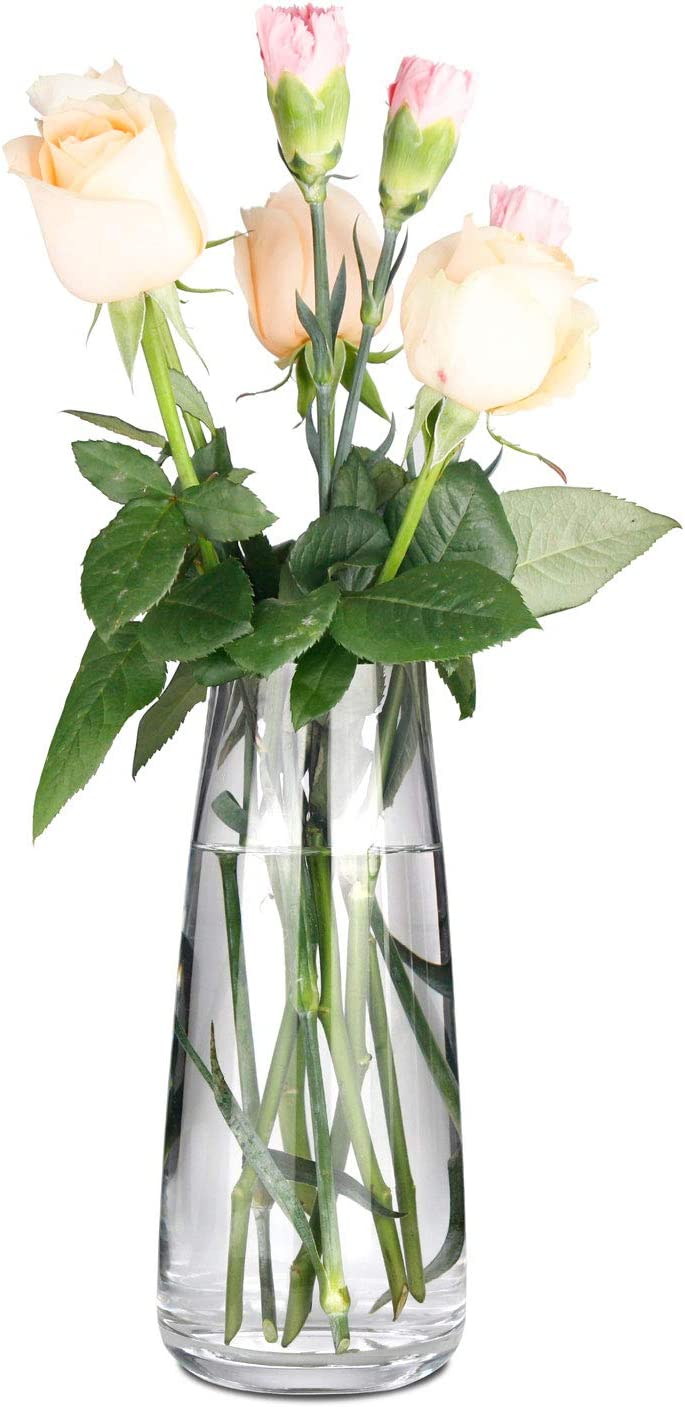 KatoonX Flower Vases Crystal Glass for Home Decor Wedding or Gift (Clear)