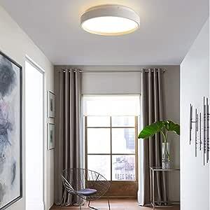 HYLH Lámparas Techo LED Modernas Lámpara Techo diseño Lámpara Dormitorio Metal Macaron Lámpara Estudio Lámpara Techo Pantalla acrílico Kinderlampe 6000K luz Blanca, Blanco, Ø45cm: Amazon.es: Hogar