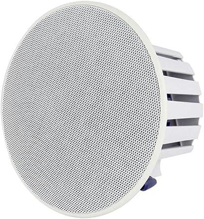 GOUP El Altavoz Inalámbrico Bluetooth, El Altavoz De Techo Activo, El Techo De Sonido De Alta Fidelidad, El Altavoz Ultraportátil Se Puede Conectar A La Computadora del Televisor: Amazon.es: Hogar