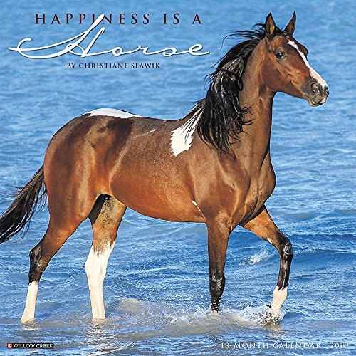 Happiness is a Horse 2019 Wall Calendar