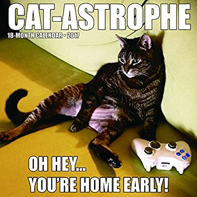 2017 Cat-Astrophe Wall Calendar