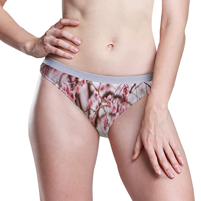 low cost classic styles details for Low-Rise Panties for Women, Cherry Blossom Beautiful Hipster ...