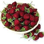 Gresorth-12pcs-Artificial-Lifelike-Simulation-Big-Strawberry-Fake-Fruit-Home-Kitchen-Decor-Photo-Props