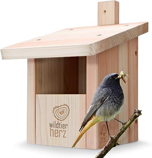 corazón Animal Salvaje   Caja Nido para colirrojo, Robins & Co de Madera Maciza - atornillada y Resistente a la Intemperie, casa de pájaros e incubadora para criadores especializados: Amazon.es: Productos para