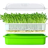 LeJoy Garden Seed Sprouter Tray BPA Free PP Soil-Free Big Capacity Healthy Wheatgrass Grower with Lid Sprouting Kit 13.4x9.84