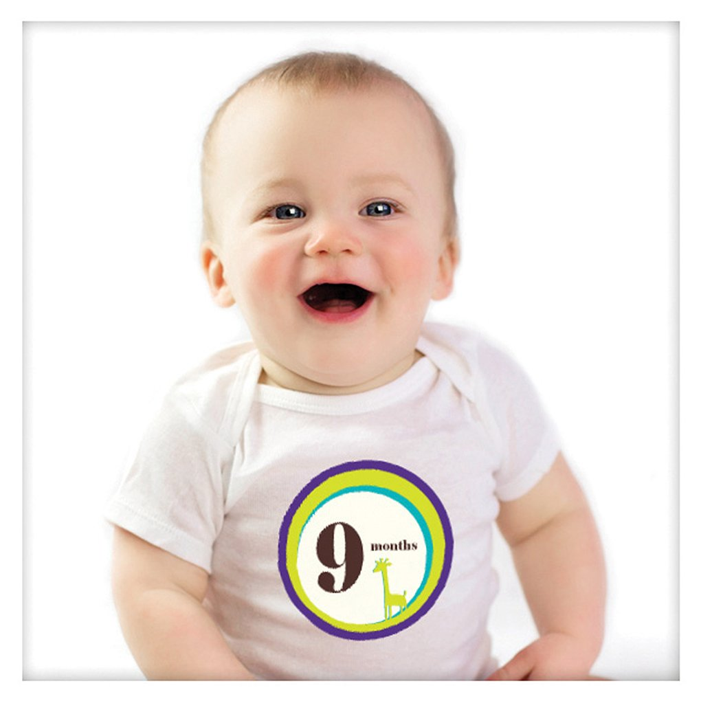 Sticky Bellies Baby Month Stickers - Wild One 317