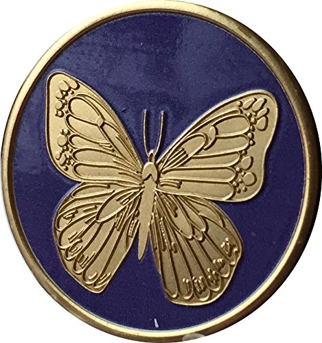 Wendells Purple Bronze Butterfly Medallion Chip With Serenity Prayer On The Back -