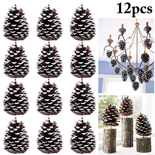 Coxeer Large Pine Cones, 12 PCS Big Pinecones Decor Hanging Ornaments Natrual Pinecone Christmas Tree Ornaments Snow 3.94