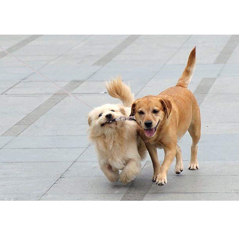 Tresbro Correa de Perro Resistente a La Masticación, Cable de Acero para Entrenamiento de 5 Pies / 1,5 Metros de Alta Resistencia para Perros Pequeños ...