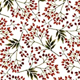 Jillson Roberts 24 Sheet Count Snow Berries Christmas Printed Tissue, White/Red/Green