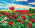 LovetheFamily 数字油絵 数字キット塗り絵 手塗り DIY絵 デジタル油絵 香水のポピー 40x50cm ホーム オフィス装飾の商品画像