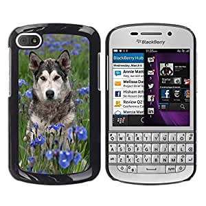 Print Motif Coque de protection Case Cover // F00003131 Scrabble del perro // BlackBerry Q10
