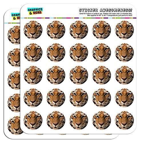 The 10 best tiger stickers for teachers for 2020
