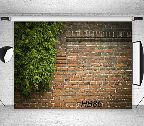 LB 7x5ft Vinyl Photography Backdrop Customized Photo Background Studio Prop HB86 ()