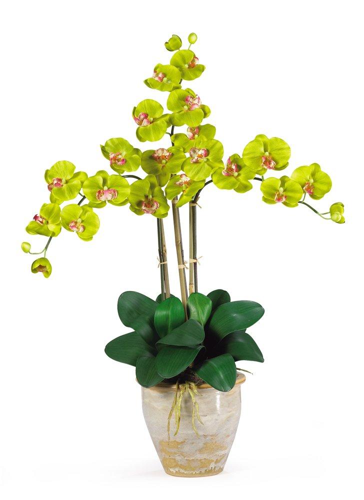 Nearly Natural 1017-GR Triple Phalaenopsis Silk Orchid Flower Arrangement, Green