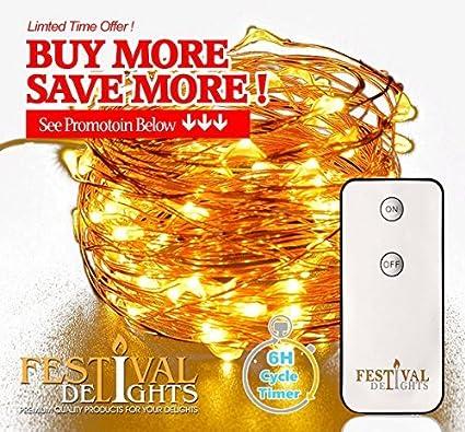 delights lighting. Plain Lighting Festival Delights Fairy Lights LED String Lights With Remote And Timer 60  LEDs Inside Lighting