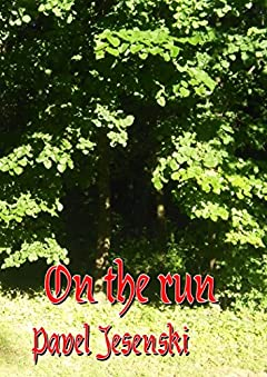 On the Run (Autumn of Ablor Book 2)