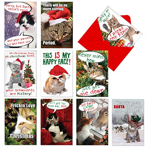 10 Boxed 'PETiGREET Cat-mass Cards' Assorted Merry Christmas Cards w/ Envelopes - Funny Cat Xmas Cards - Furry Felines for Happy Holidays and Seasons Greetings (10 Designs, 1 Card Per Design) A1254