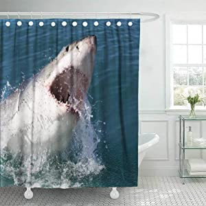 Douecish 72X78 Shower Curtain, Shower Curtain Great White Shark South Africa Cool Shower Curtain with Hooks Waterproof Eco-Friendly Long Shower Curtain for Bathroom
