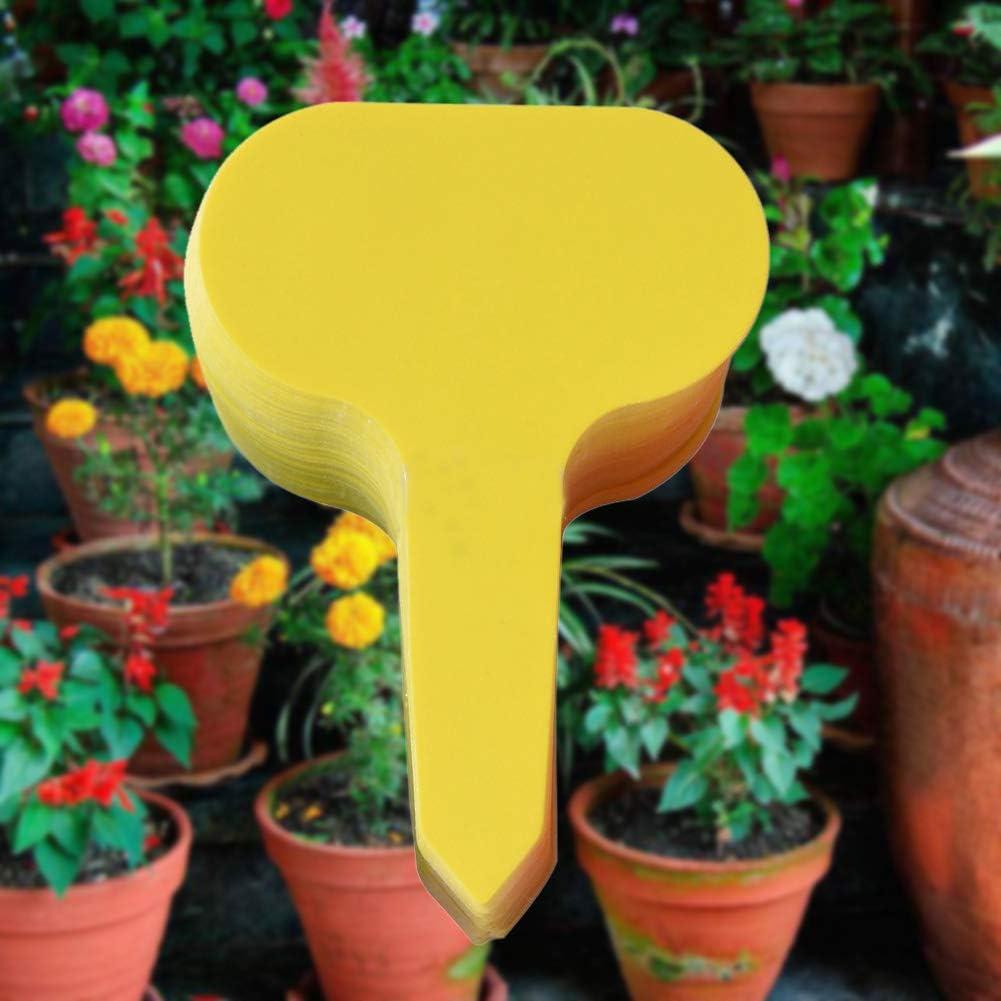 Etiketten Bauernhof Pflanzen Gr/ün Saniswink Home and Garden Decor Pflanzmarker Gartenarbeit Baum 100 St/ück//Set Gem/üse
