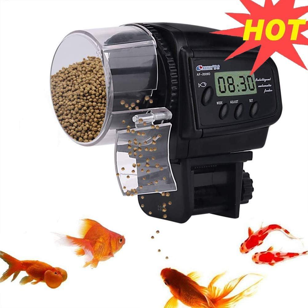 Une personne utilisant Mangeoire à poisson automatique