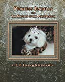 img - for Princess Isabella and The Mystery of the Pink Dragon (Volume 1) book / textbook / text book