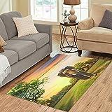 InterestPrint Carpet Elephant on Sunset Area Rug 5'x 3'3, Indian Africa Animal Modern Floor Mat Rugs for Children Living Room Bedroom Home Decor