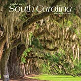 South Carolina Wild & Scenic 2020 12 x 12 Inch Monthly Square Wall Calendar, USA United States of America Southeast State Nature