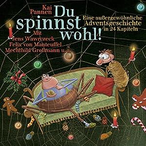 Du spinnst wohl! Eine ungewöhnliche Adventsgeschichte in 24 Kapiteln (Bisy und Karl-Heinz 1) Hörbuch