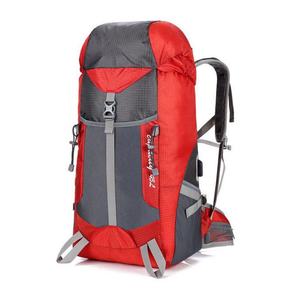 バックパック アウトドア 登山用バッグ 45L 大容量 旅行 キャンプ 備品 USB充電 スポーツ バックパック B07HQGPPSJ レッド 29*19*58cm