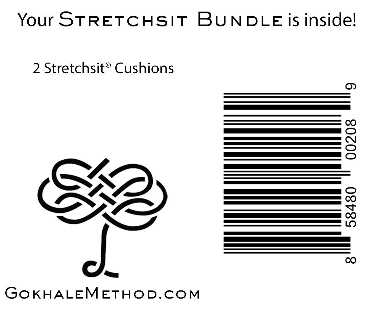 Bundle of Two Stretchsit Cushions