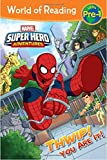 World of Reading Super Hero Adventures: Thwip! You Are It!: Level Pre-1