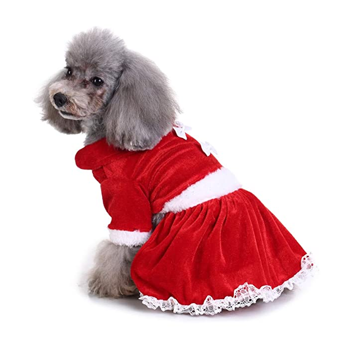 Amazon.com: Vestido de Navidad para mascotas, cachorro ...