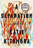 Image of A Separation: A Novel