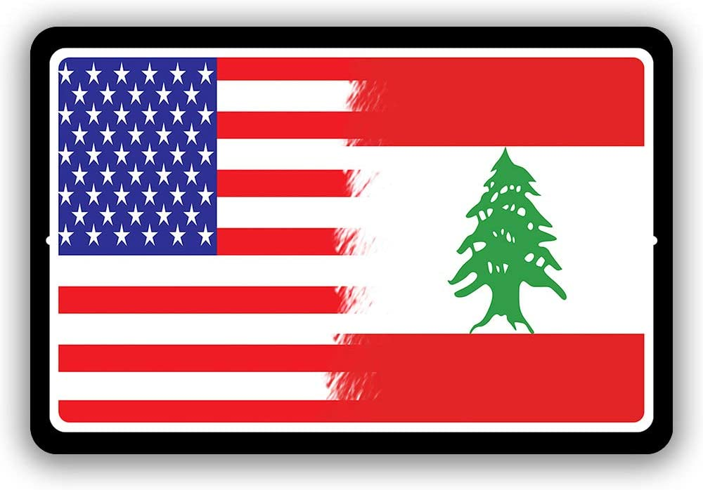 "Lebanon Country Flag vs USA Man Cave Metal Decor Tin Sign Indoor and Outdoor use 8""x12"" or 12""x18"""
