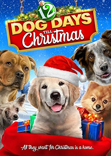 12 Dog Days Till Christmas.Amazon Com 12 Dog Days Till Christmas Reginald Veljohnson
