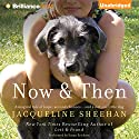 Now & Then Audiobook by Jacqueline Sheehan Narrated by Susan Ericksen