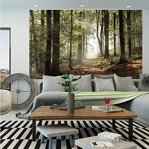 SoSung Farm House Decor Wall Mural,Autumnal Forest Pathway in The Mountains with Mist in The Distance Wilderness Scene,Self-Adhesive Large Wallpaper for Home Decor 83x120 inches,Green Brown