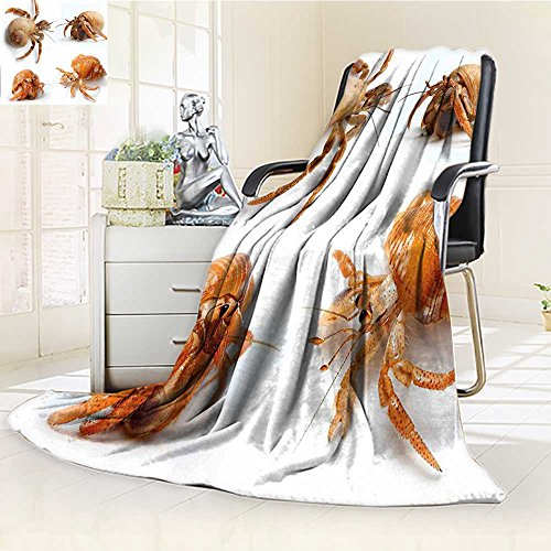 - AmaPark Digital Printing Blanket Set of Hermit Crabs from Caribbean Sea Print Marig and White Summer Quilt Comforter
